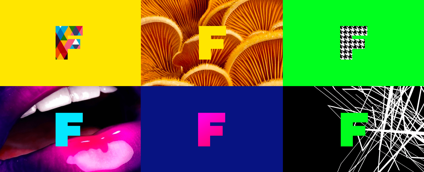 FEED F logo on pattern backgrounds